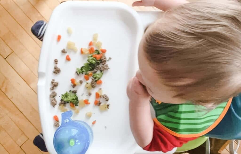 baby led weaning at daycare