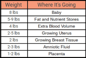 pregnancy weight gain breakdown chart