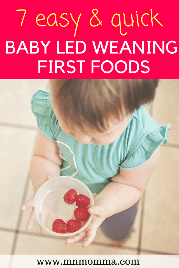 Baby Led Weaning Foods - First Food Ideas for Baby's starting solids